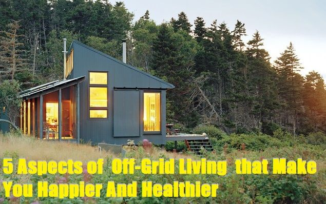 discusses the long term health and happiness aspects of living off-grid