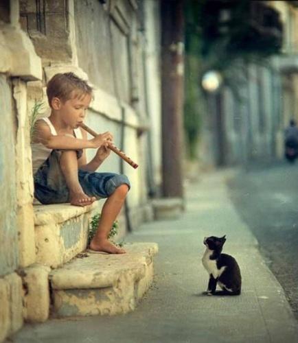 Arte en todos los rincones del planeta. Música para todos los oídos. Translate: Art in all corners of the planet. Music for all ears.