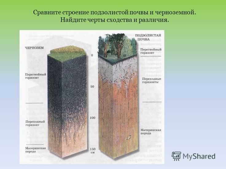 Soil diagram