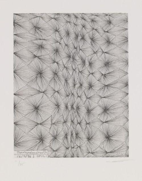 Penrhyndeudraeth , 1996 Chris Ofili