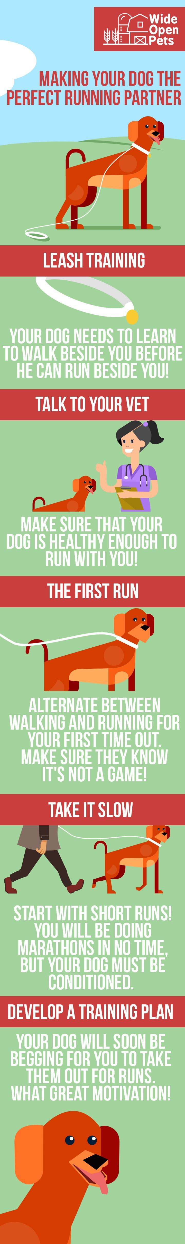 Do you have an energetic dog? Keep both you and your pup in shape with these tips on turning your dog into the perfect running partner.  // KaufmannsPuppyTraining.com // Kaufmann's Puppy Training // dog training // dog love // puppy love