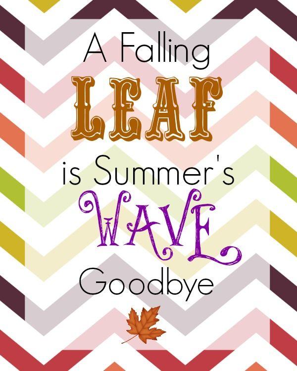 Free Thanksgiving Printable A Falling Leaf is Summer's