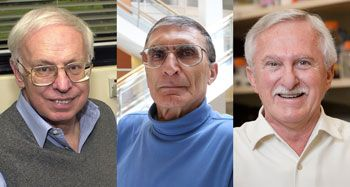 Three researchers have won the 2015 Nobel Prize in chemistry for working out how cells fix damaged genetic material. The 2015 Nobel Prize in chemistry was awarded to Tomas Lindahl (left), Aziz Sancar (center) and Paul Modrich (right) for their work on DNA repair.