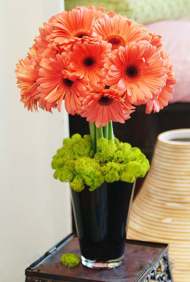coral flowers for wedding centerpieces 32 best gerber arrangements images on 3062