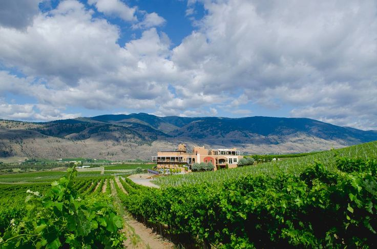 For Burrowing Owl Estate Winery, it's all about the wine | Georgia Straight Vancouver's News & Entertainment Weekly