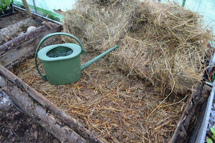 Making a new hot bed in my polytunnel. December. Sweden. http://www.skillnadenstradgard.blogspot.se/2014/12/varmbank-i-odlingstunneln.html #gardening #growfood #trädgård #odla #hotbed #polytunnel