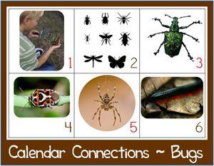 Calendar printablesCalendar Connection, Connection Bugs, Connection Printables, Bugs Cards, Bugs Theme, Calendar Cards, Bugs Calendar, Calendar Printables, Bugs Insects