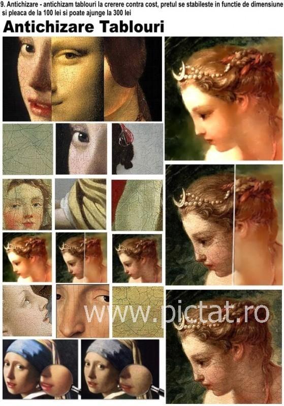 Tablouri pictate: Antichizare, restaurare tablouri Pictor Preda Bianca Angelica