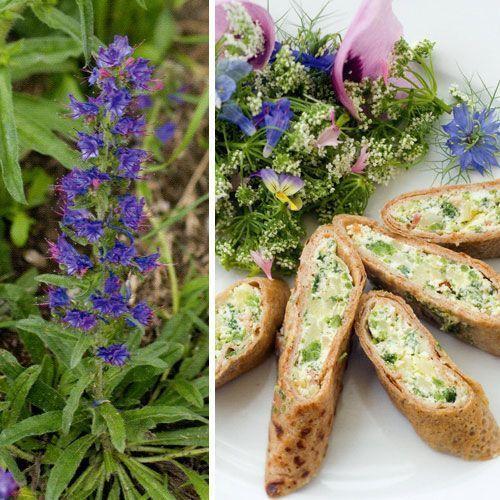 3 ricette per cucinare con le erbe selvatiche