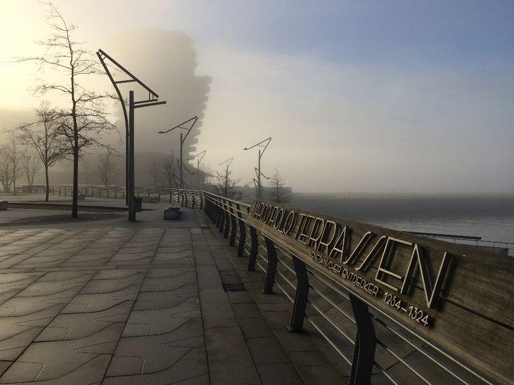 Fotogalerie: Hamburger Hafencity im Morgennebel