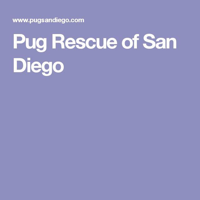 Pug Rescue of San Diego