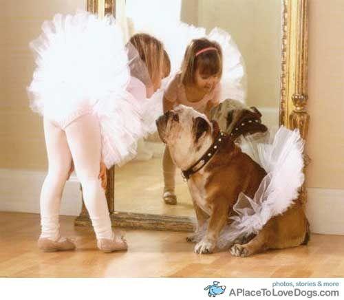 pup love: Little Girls, Ballet Dancers, Best Friends, Dresses Up, Tutu, Ballerinas, English Bulldogs, Kid, Animal
