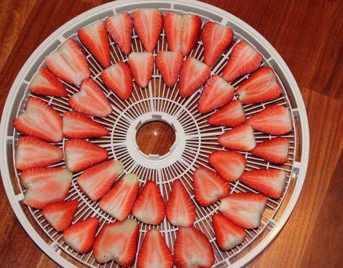 Dehydrator Recipe: Strawberry chips