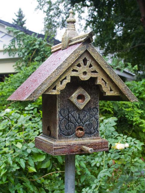 17 best images about gothic bat and bird house on for Creative birdhouses