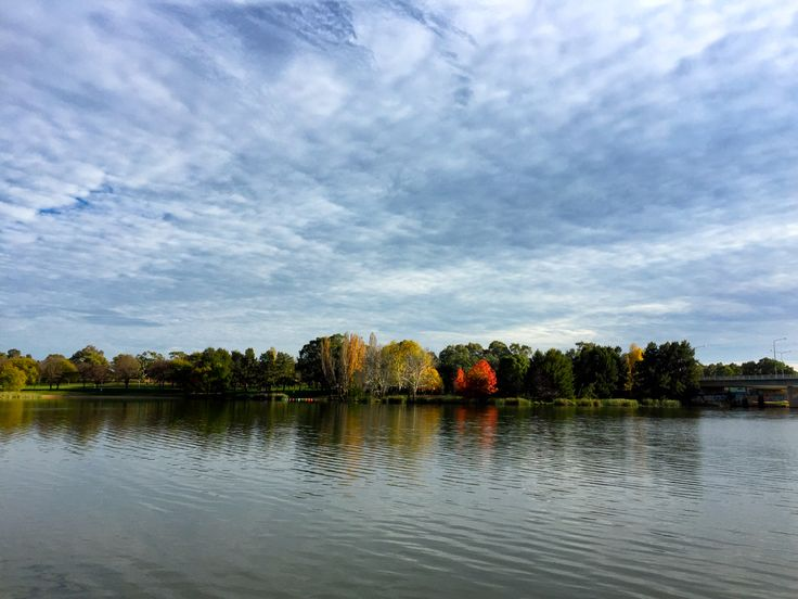Autumn leaves and clouds on Lake Ginninderra