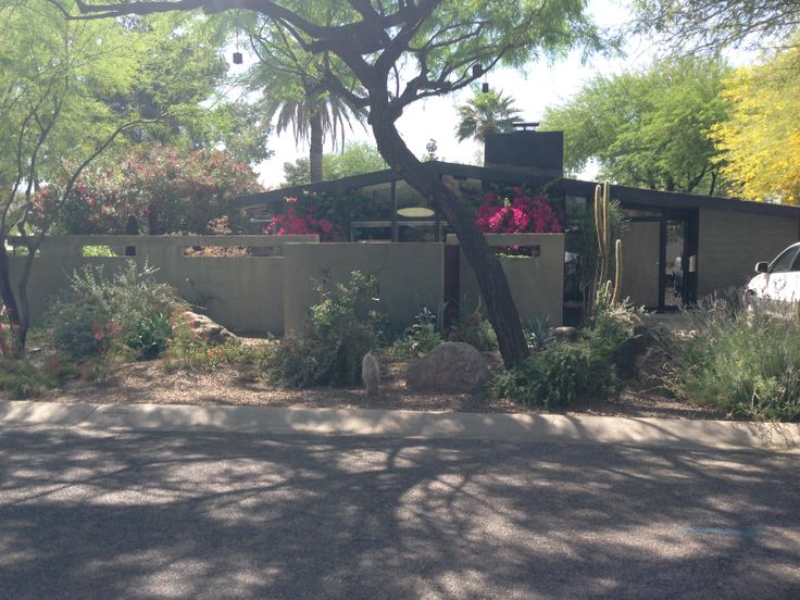 courtyard walls, visibility at tall height with cutouts, stucco, varying setbacks. #haver #mcm #phoenix #curbappeal lots of shade