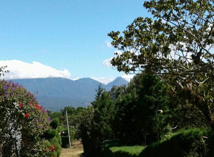 Izalco desde Apaneca