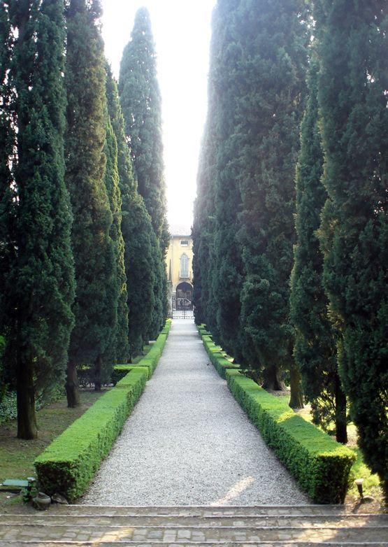 Giardino Giusti, Verona, Italy: Giusti Verona, Future Driveways, Beautiful Italy, 100 Italy, Verona Italy, Locn Giardino Giusti, Travel Italy, Beautiful Gardens, Italy Travel