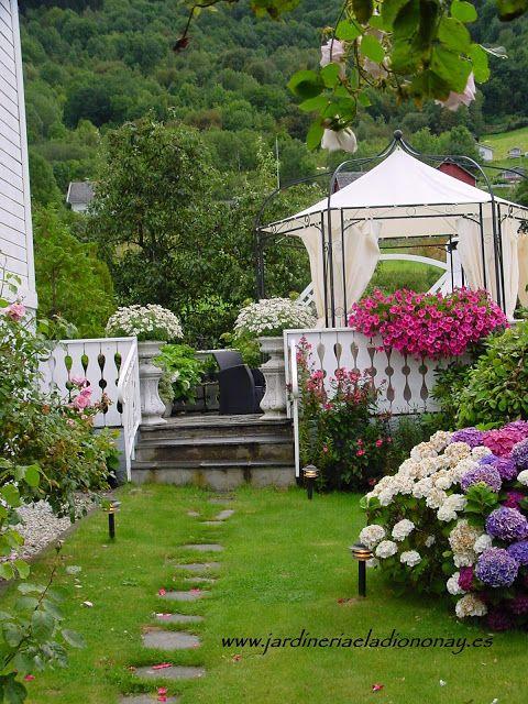 Jardineria Eladio Nonay: LAS FLORES UNA SINFONÍA DE COLORES (Jardinería Ela...