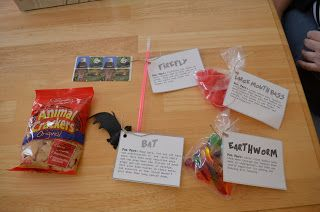 Wild Kratts birthday party - this mom has amazing ideas for games and party favors!