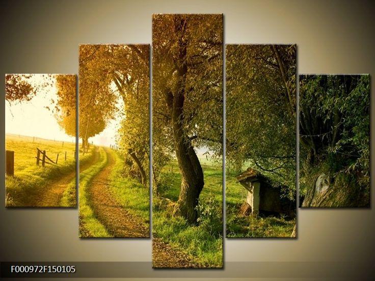 Moderní obraz F000972F150105