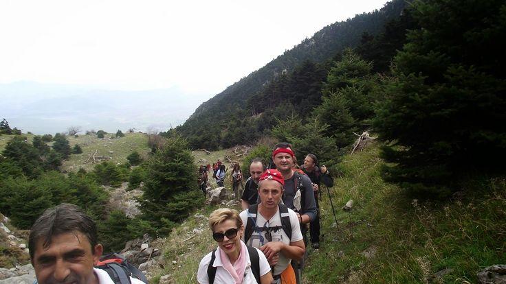 parnassos-news: Πεζοπορία στον Παρνασσό
