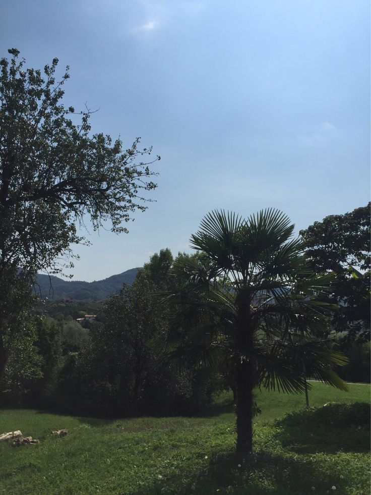 Pausa pranzo in collina e si riparte. #webkitchen #venerdi #asolo #castelcucco #monfumo