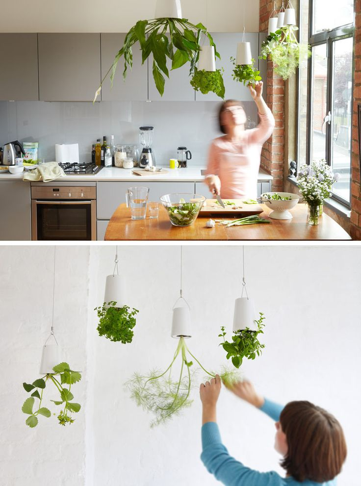 Indoor Garden Ideas - Hang Your Plants From The Ceiling & Walls // Make a statement and shock your guests with upside down hanging planters. Technology keeps the soil and water in while allowing your plants to thrive.