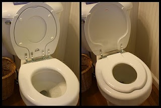 Toddler potty seat--we have one at home & i love it!! :)