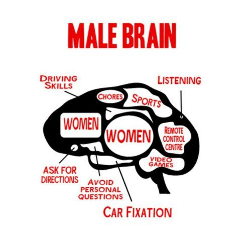 The Male Brain 118