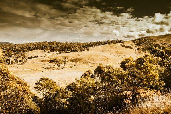 Wide australian outback background of vintage farmland with hillside trees and dried grassland. Jericho, Tasmania, Australia by Ryan Jorgensen