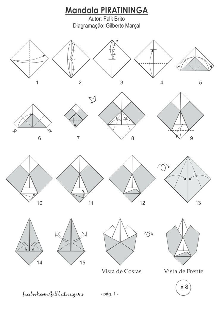 Vista Origami Experience