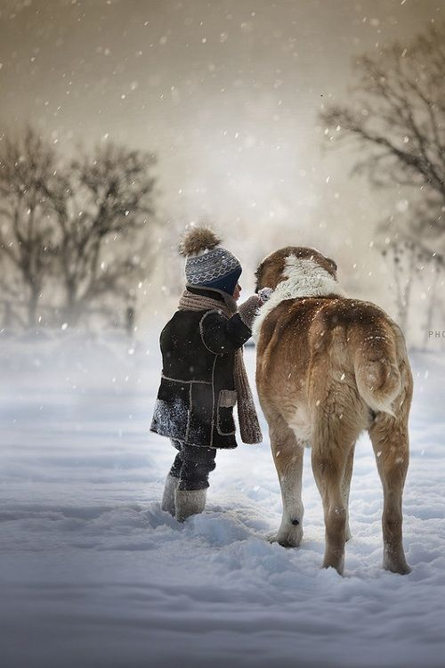 Puppy Love!  by: Elena Shumilova