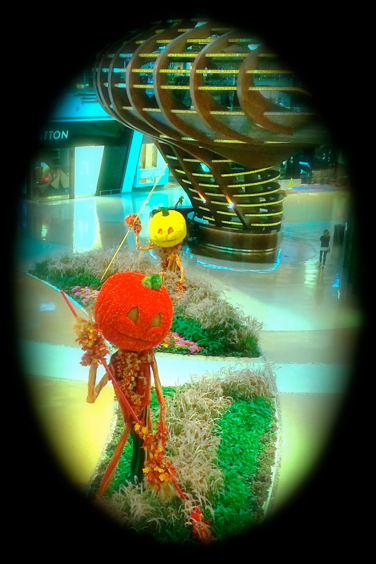 Wow! Pumpkin Patch- Fall Design- Gardens I photographed at the Crystal Shops outside the Aria Hotel, Las Vegas, Nevada.