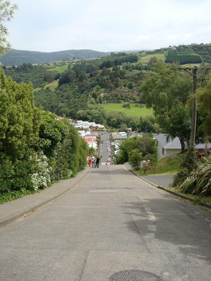 """The """"Steepest Street in the World"""" Dunedin New Zealand By www.silberhorn.co.nz  #travel #nz #travelnz #silberhorn"""