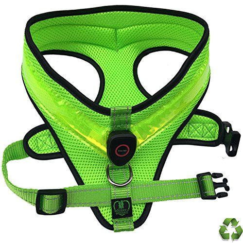 LED Dog Safety Harness  Illuminated and Reflective Flashing Dogs Vest That Light Up For Safe Night Walking  USB Rechargeable  Fully Adjustable  Green  PLEASE Measure Dog Before You Order *** Want additional info? Click on the image.
