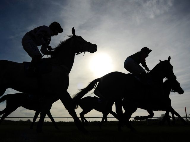 Timeform South Africa SmartPlays: Monday January 30  https://www.racingvalue.com/timeform-south-africa-smartplays-monday-january-30/