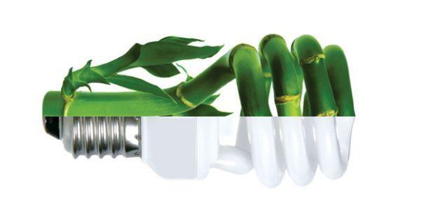 Cambia los focos incandescentes por focos ahorradores en casa, así ahorras energía y dinero