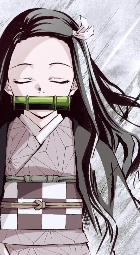 Pin de Athena Cota em Kimetsu no Yaiba Garotos anime