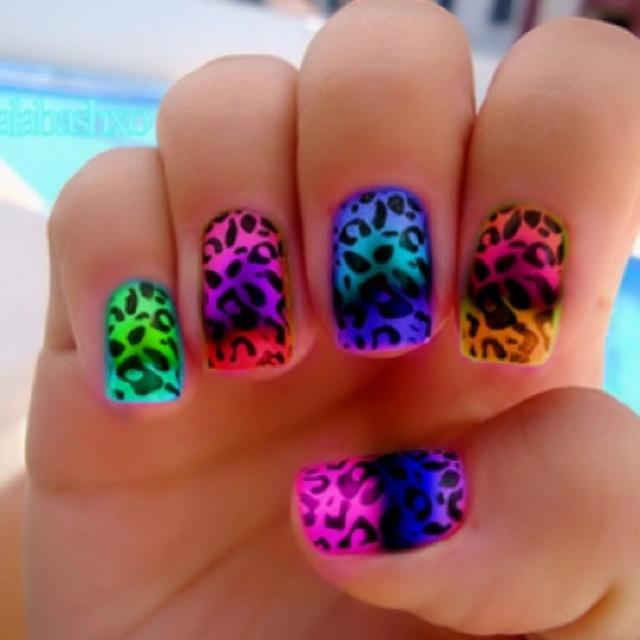cheetah!!