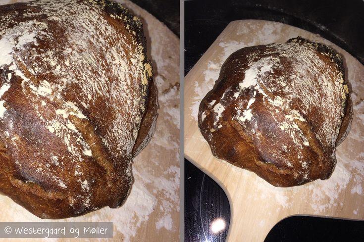 Prøv vores opskrift på et lækkert koldhævet brød med øl, surdej, maltmel og ølandshvede. Det smager helt fantastisk og er nemt at lave.