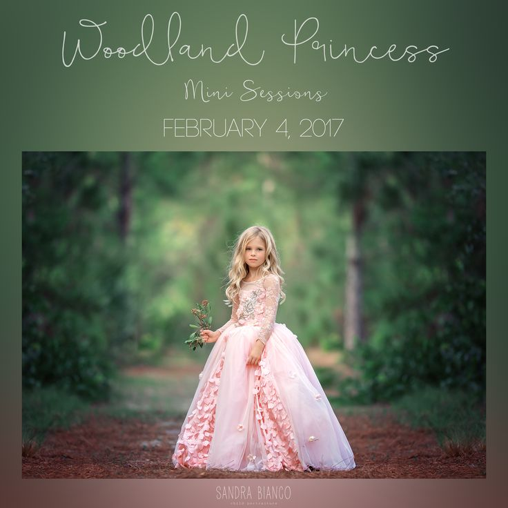 Princess Mini Sessions details: Date: February 4, 2017 Where: Location in Jupiter, FL Time: Please select your time slot by clicking on the drop do...