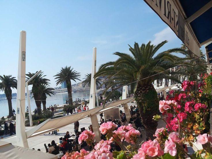 Riva# Split