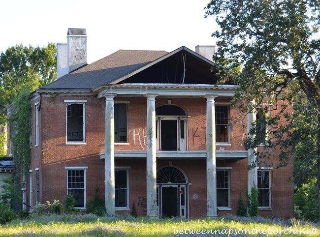 Historic arlington home to raccoons now federal style for Home builders ms
