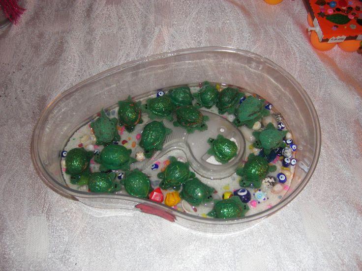 Ceviz kabuklarını yeşile boyayım su kaplumbağaları mızı yaptık.