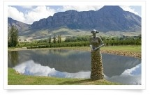 Saronsberg Wine Cellar has a beautiful 2,5 m sculpture by artist Angus Taylor and a striking tasting room where guests can sample their wine.
