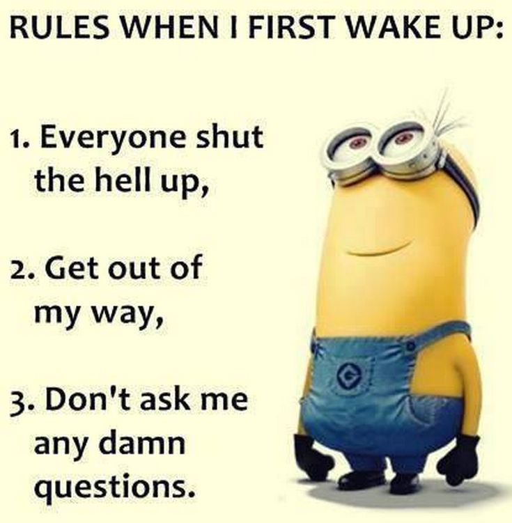 Sunday Minions quotes of the hour (06:58:04 AM, Sunday 28, February 2016 PST) – 10 pics