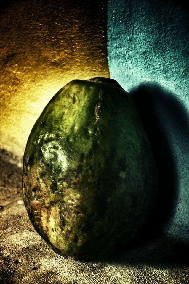 Portrait of papaya