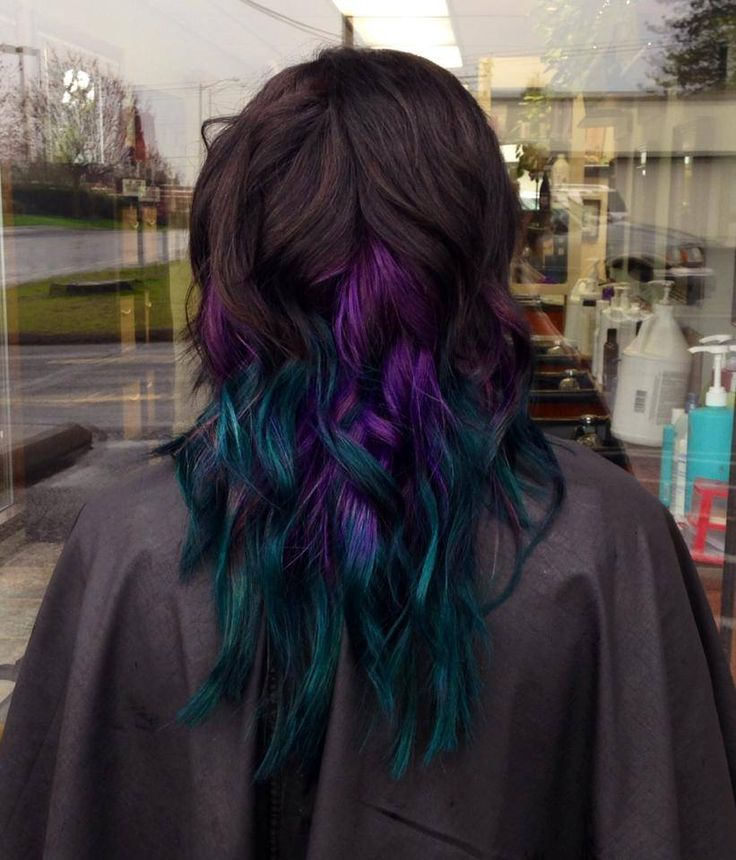 25 Best Ideas About Peacock Hair Color On Pinterest  Peacock Hair Crazy Co