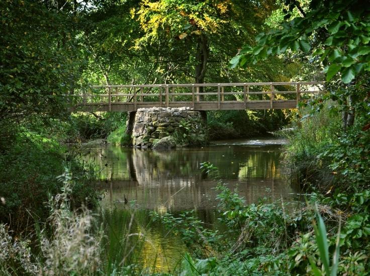 The wooden bridge in Aden Park, Mintlaw, Aberdeenshire.